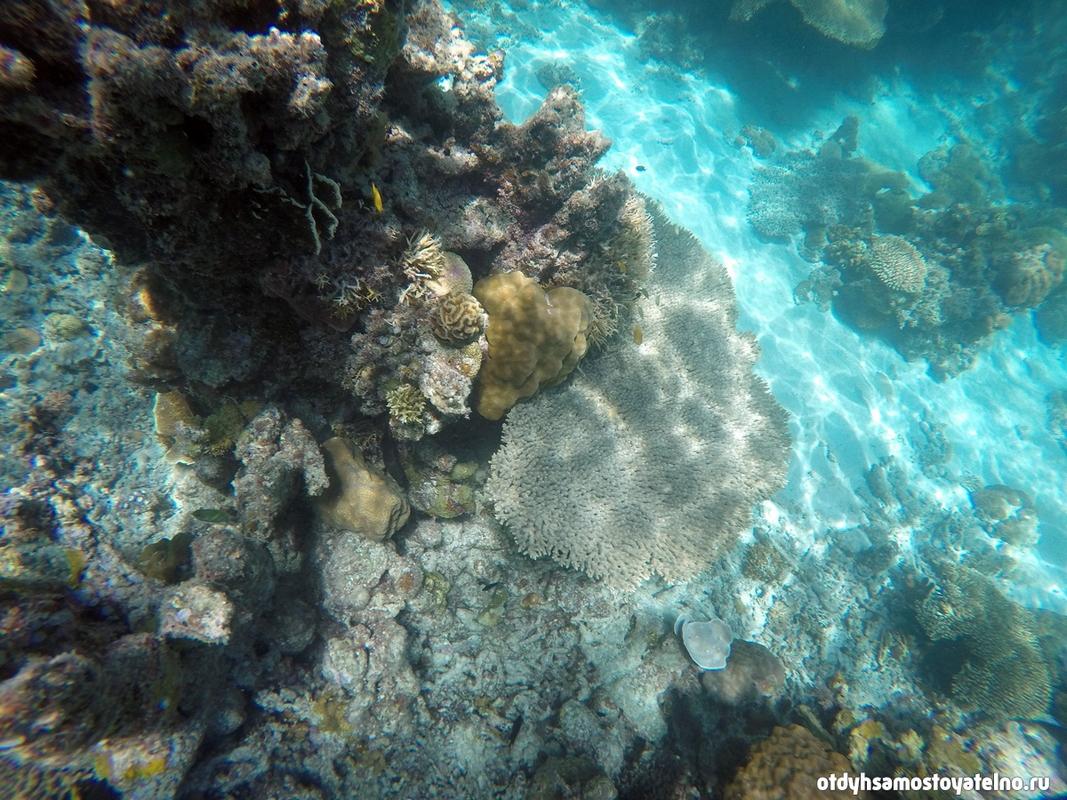 snorkling-v-twin-lagoon-na-philipinah