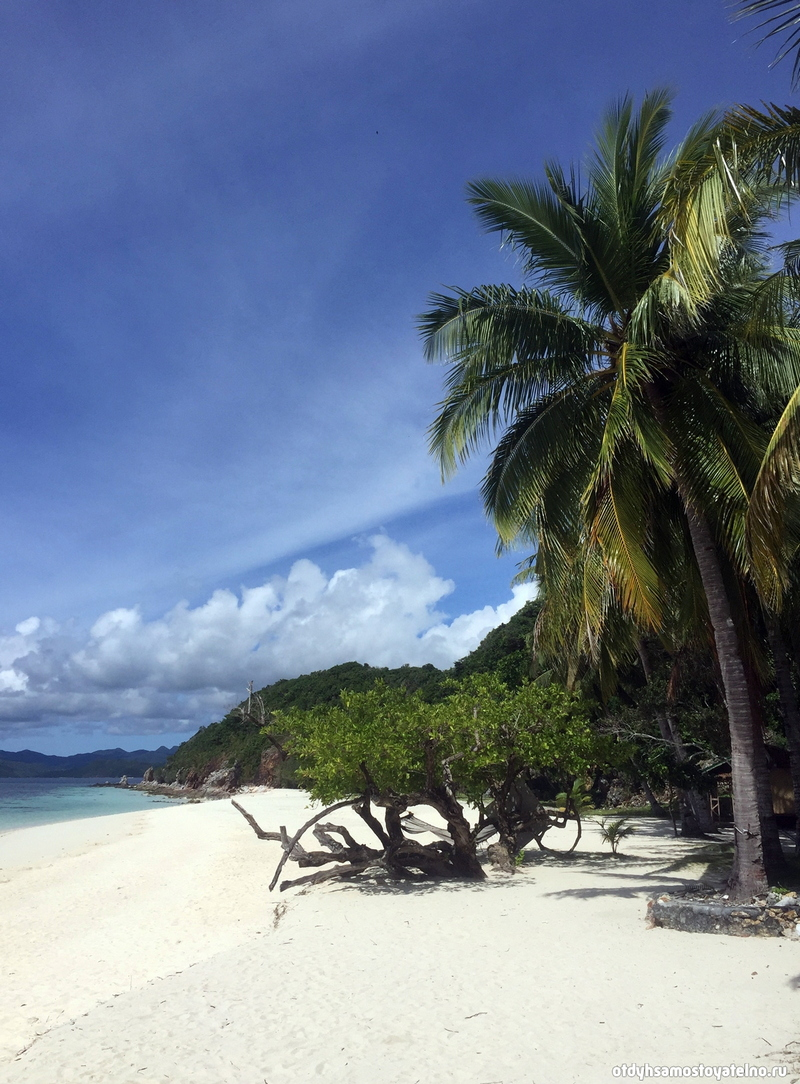 otdyh-malcapuya-ostrov-philipiny