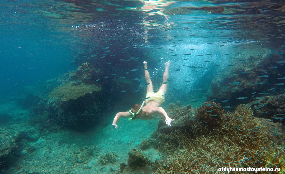 andrei snorkling popocan palawan