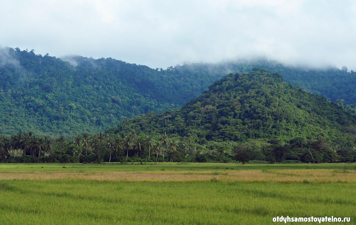 фото природы - филиппины