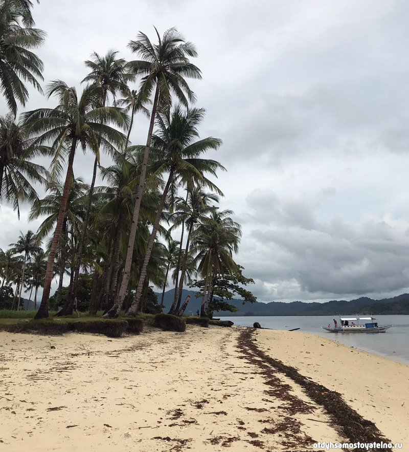 plyazh palmy pinagbuyutan island elnido