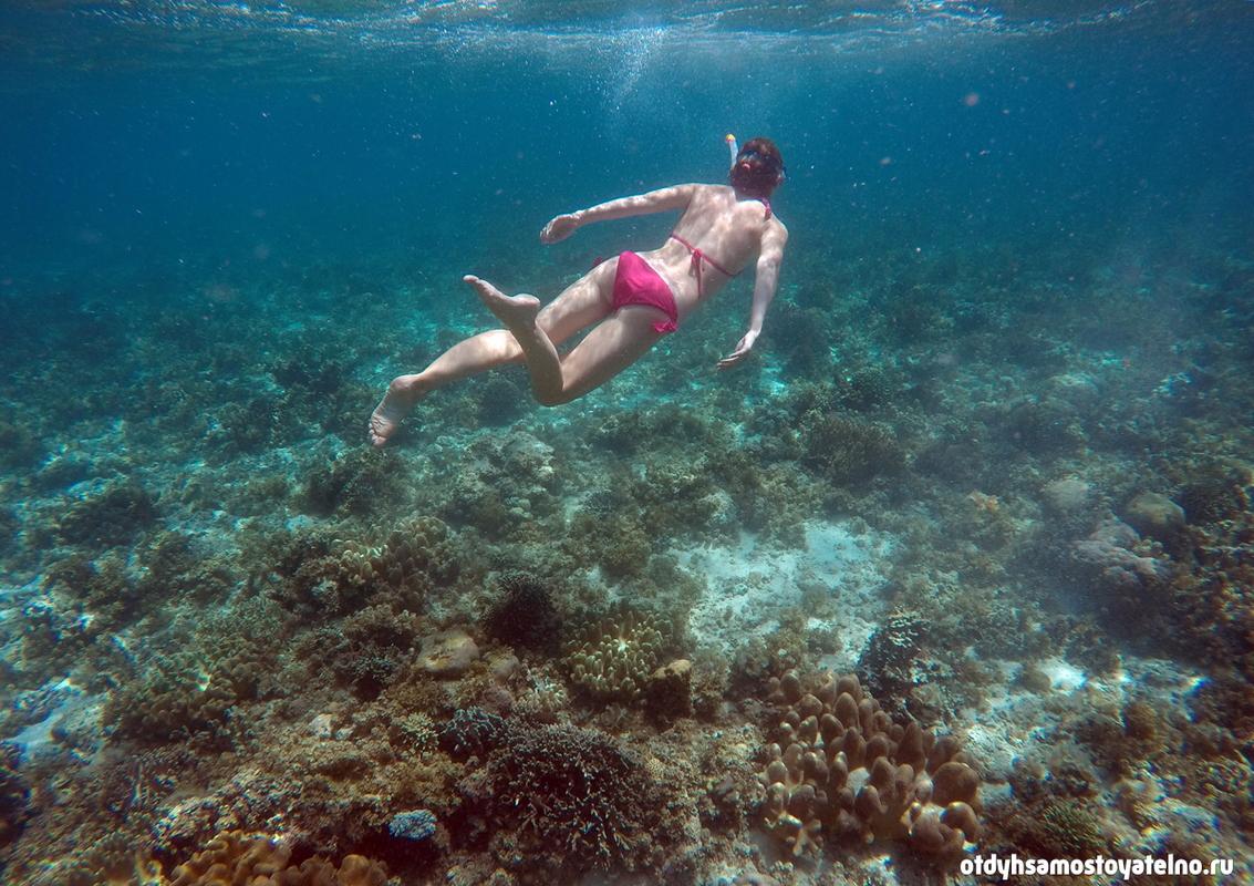 snorkling_girl_moalboal_cebu