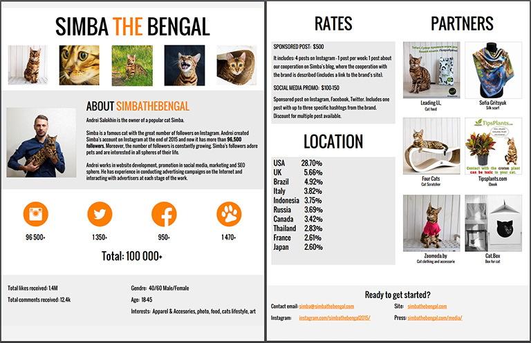 Заработок блога: Медиакит - стоимость услуг и статистика аудитории