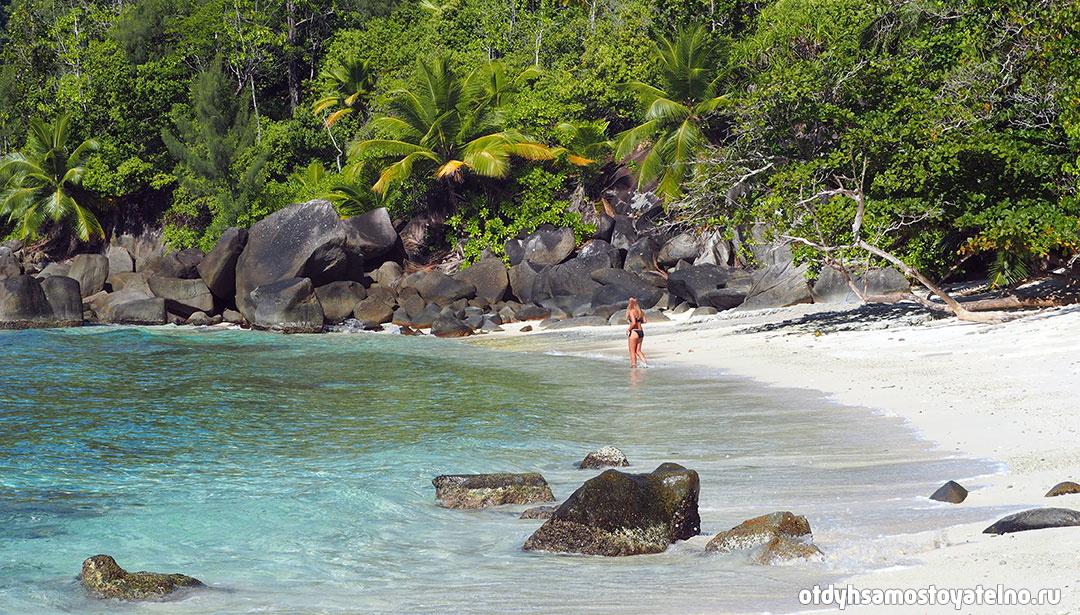 фото красивого пляжа на сейшелах