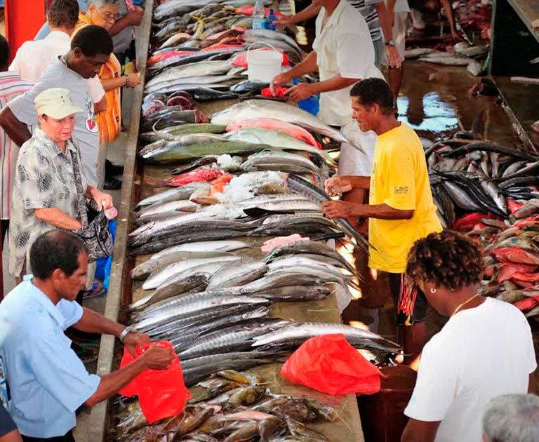 рынок в виктории seychelles