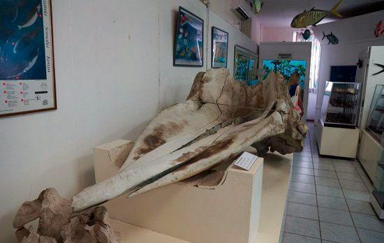 seychelles national museum