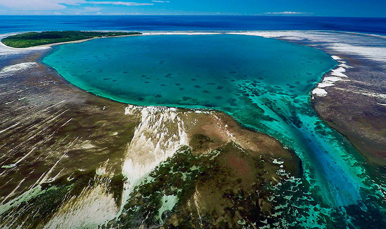 сейшелы остров aldabra юнеско